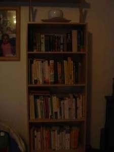 My 'new' bookshelf
