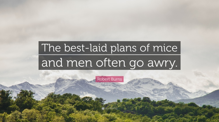 589824-Robert-Burns-Quote-The-best-laid-plans-of-mice-and-men-often-go